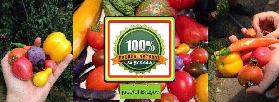 La Borcan județul Brașov