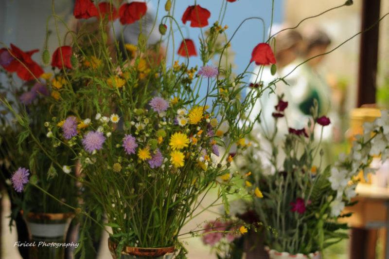 Flori de câmp și fân în grădină, a fost de vis