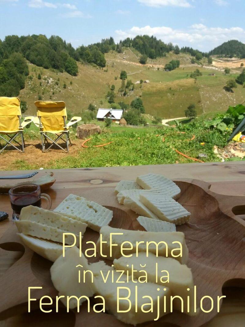 PlatFerma in vizita la Ferma Blajinilor din FUndata, judetul Brasov