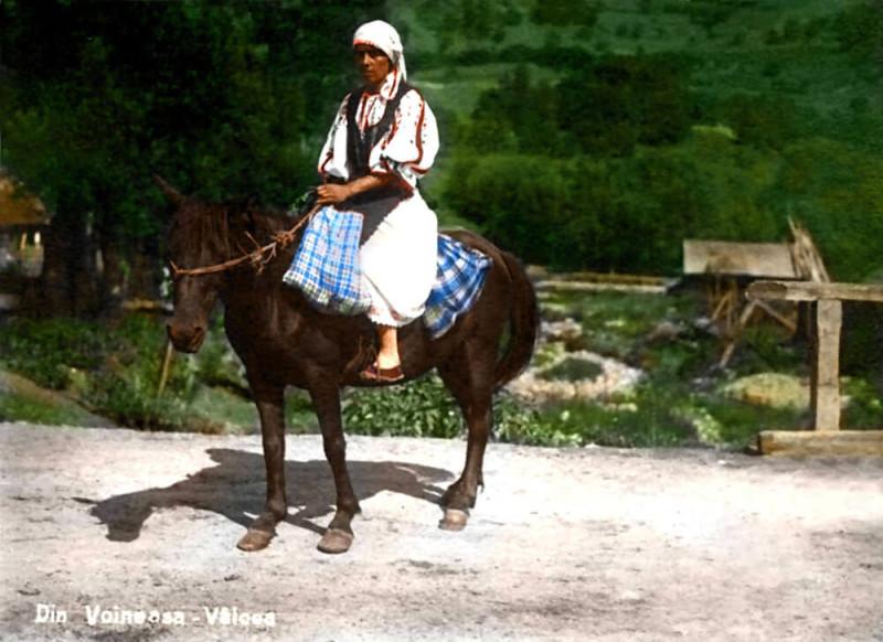Taranca din Voineasa Valcea Istoria românilor în culori