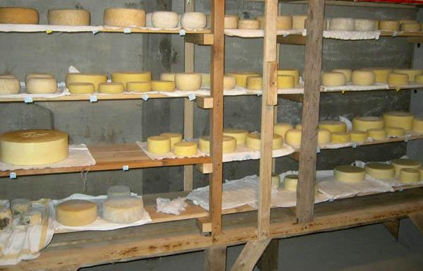 Brânzeturi la maturat în pivniță