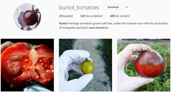 buniol Instagram