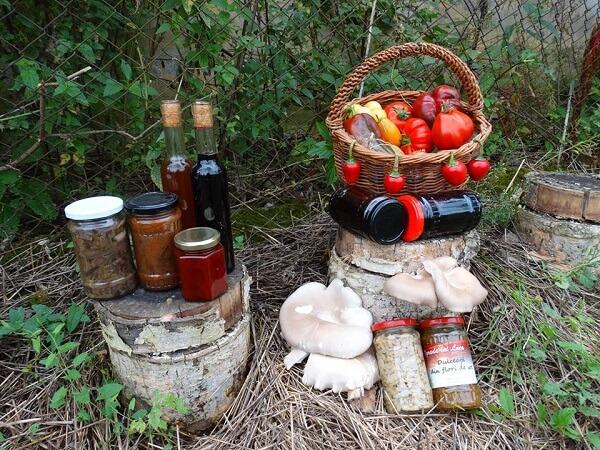 borcane-cu-legume-din-ograda-lui-luca-3