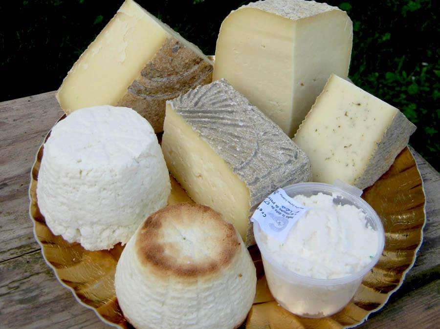 Brânză de la Asociatia Curtea Culorilor din judetul Timis (6)