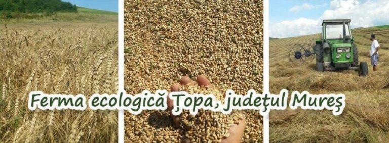 Ferma Ecologica Topa din judetul Mures