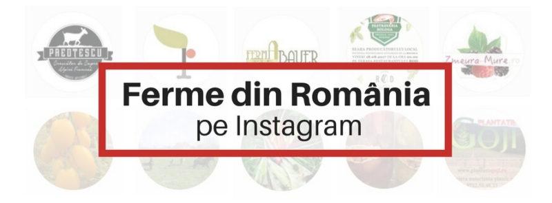 Ferme Romania Instagram