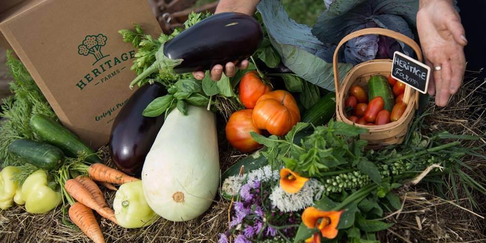 Grădinile Heritage, coșul cu legume