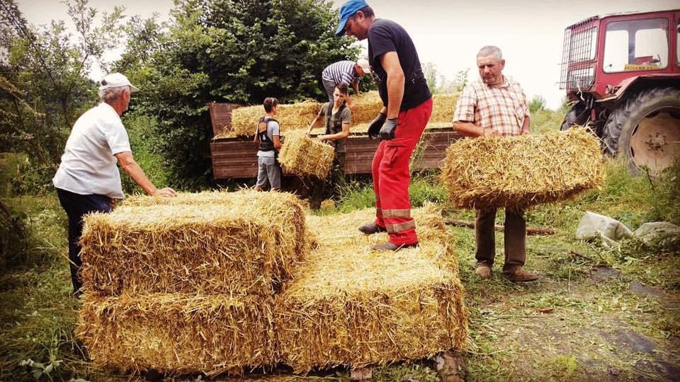 Munca în gospodărie la Ferma Bărzani